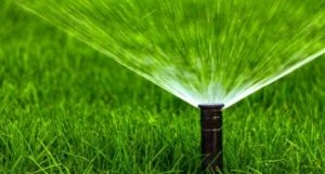 Efficient-irrigation-sprinkler-or-drip-Thornton-CO