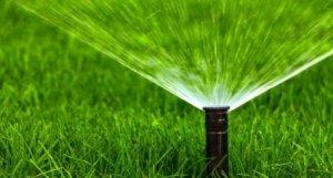 Efficient-irrigation-sprinkler-or-drip-Thornton-CO
