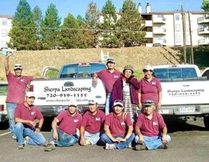 Experienced skilled Sherpa Landscaping crew