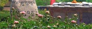Nepali rock work in xeriscape garden in Columbine valley Littleton Colorado