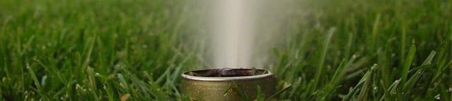 irrigation plan and installation