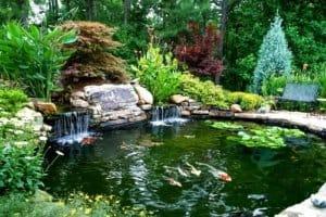 backyard water feature Louisville Colorado