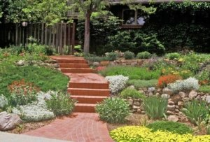 save time with xeriscape Aurora Colorado
