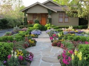 save water with xeriscape Morrison Colorado